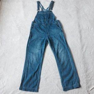 Free People Denim Overall